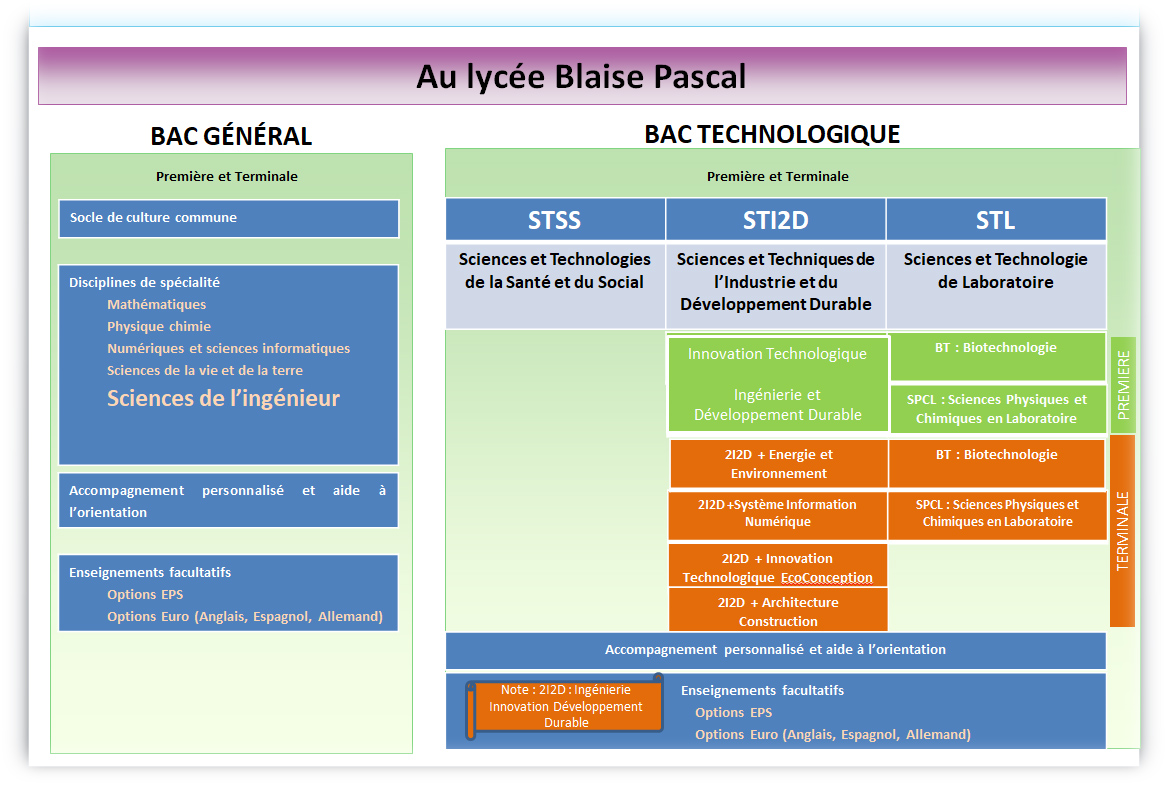 formation blaise